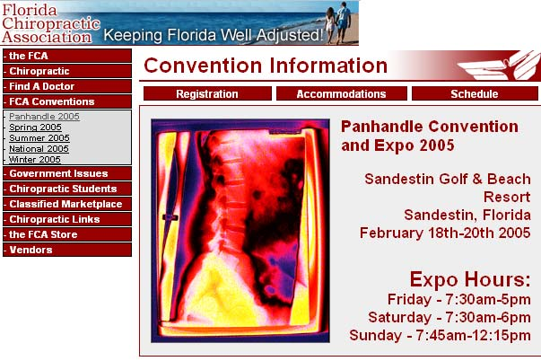 Larry Berman - Official Artist of the 2005 Florida Chiropractic Association Convention Series